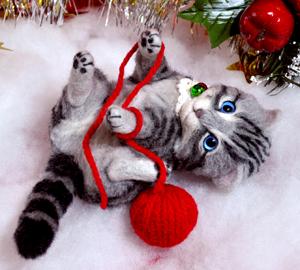 アメショ猫131126 056
