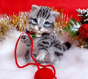 アメショ猫131126 061