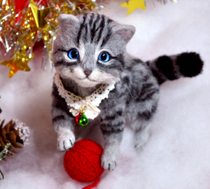アメショ猫131126 067