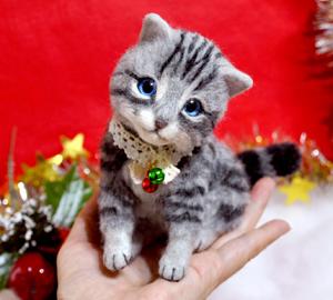 アメショ猫131126 079