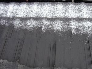 110214雪景色