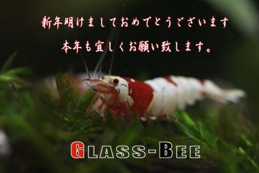 l_MG_3522.jpg