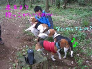 IMG_0145-三者三様