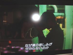 DSC04481-koiwaku.jpg