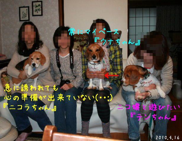IMG_6031-7-7.jpg