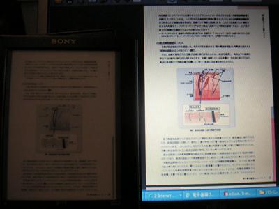 reader21.jpg