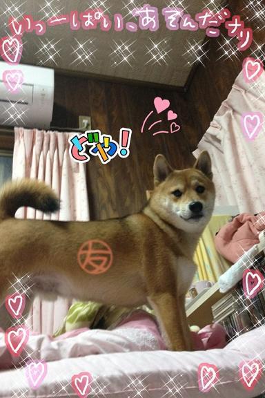 moblog_fa948401cc.jpg