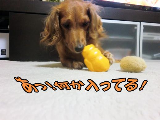 お菓子発見アル!