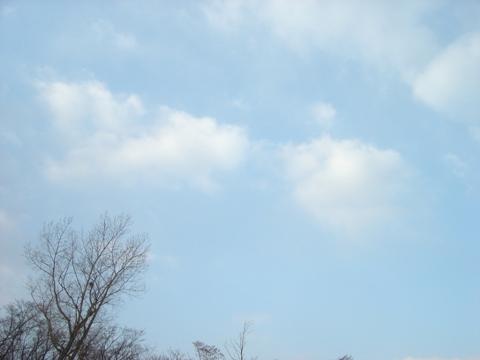 職場地方の青空(2009.12.09)