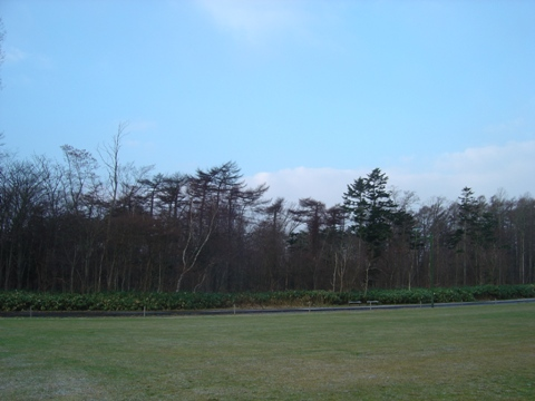 職場地方の青空アップ(2009.12.09)