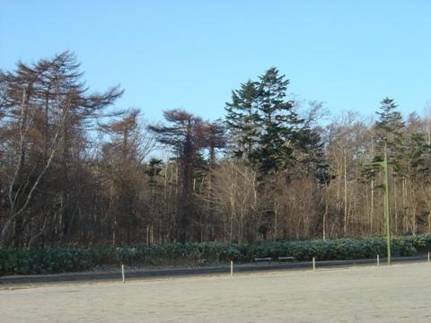 晴れの職場地方(2009.12.11)