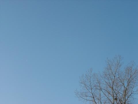 晴れた空(2009.12.11)