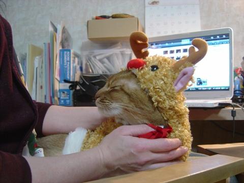 トナカイは甘えっコ(2009.12.13)