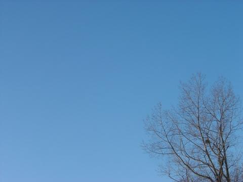 空(2009.12.16)