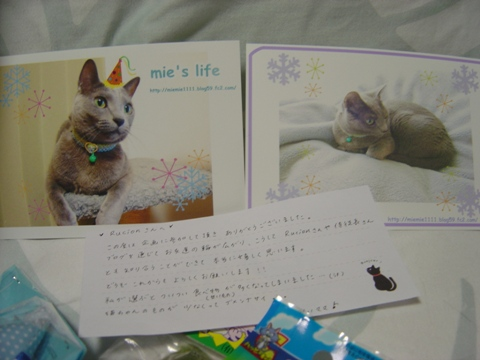 みぃくん(2009.12.17)