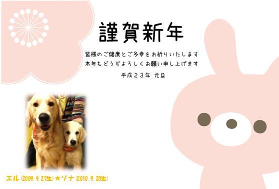 IMG_20110104-1.jpg