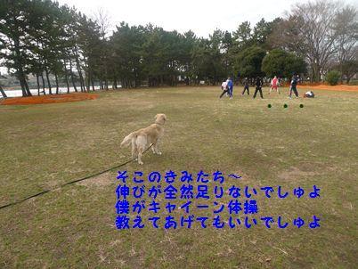 P1010421_R.jpg