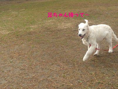 P1010428_R.jpg