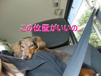 ドライブ④