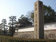 ごんちゃん 0088