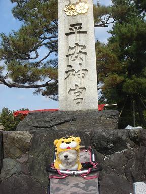 ごんちゃん 01818