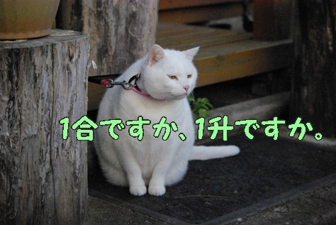 1落語13