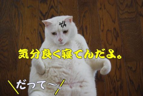 1襲撃002
