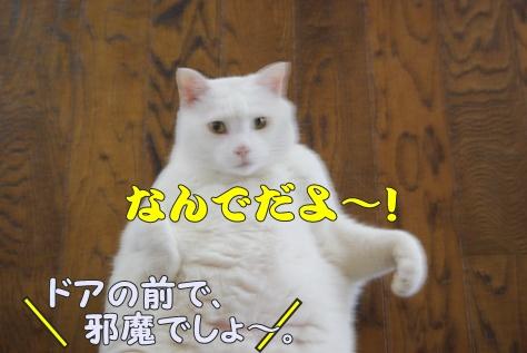 1襲撃001