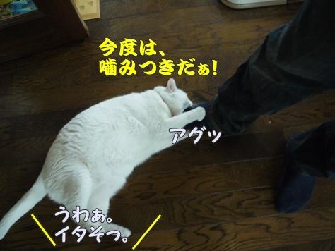 1襲撃010