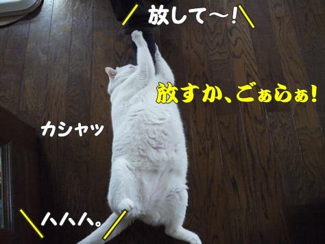 1襲撃008