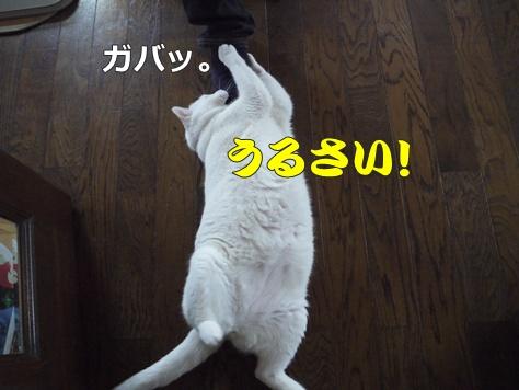 1襲撃006