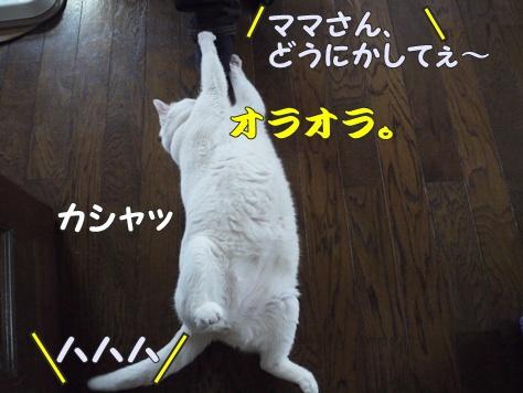1襲撃009