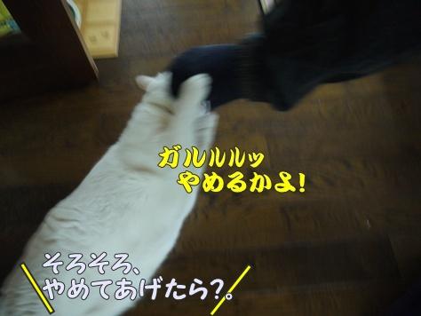 1襲撃013