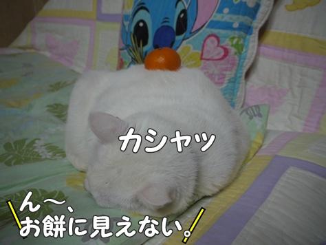1あけおめ12