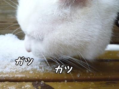 1雪遊び32
