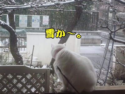 1雪遊び30