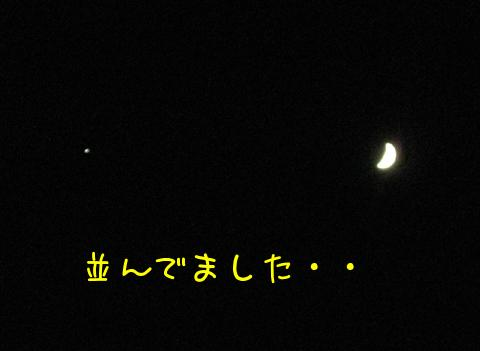 N4DhzR6i.jpg