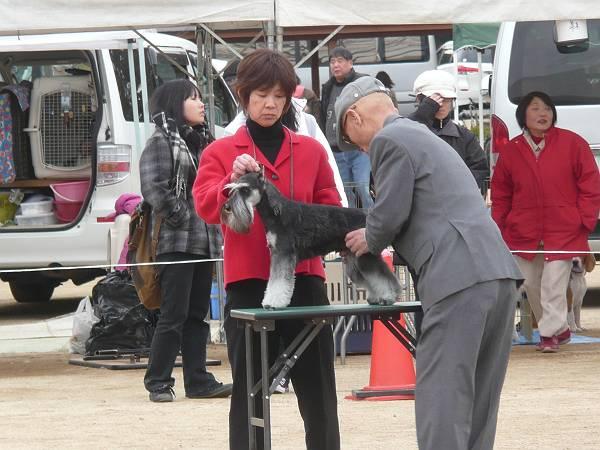 ガムシャラ松山ショー2月17日5-s