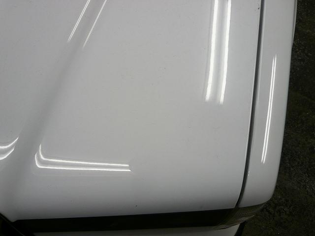 P1220099-490.jpg