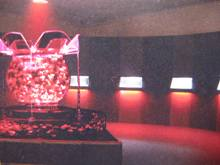 アートアクラリウム 花魁