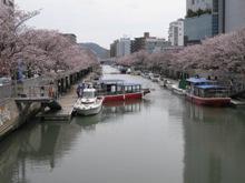 高知 鏡川