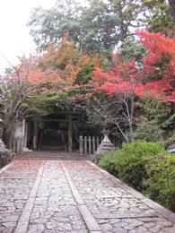 今宮神社 紅葉2