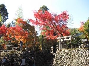 R162 神社
