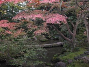廣誠院 石橋と紅葉
