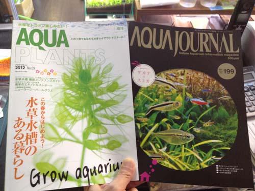 アクアプランツ最新刊 東海 岐阜 熱帯魚 水草 観葉植物販売 Grow aquarium