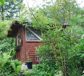 緑の中の小屋