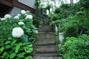 階段の左右