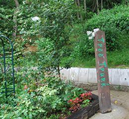 ツリートランク木の文字