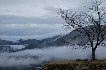 竹田城上木と雲海