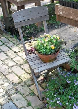 ふ 椅子と花